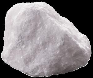 calcium-t-01-15